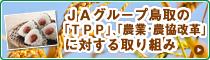 鳥取県のTPPに対する活動